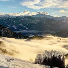 Best Skis, Holiday Hotel, Staycation, Winter Time, Skiing, Adventure, Nature, Pictures, Travel