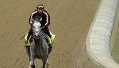 The Preakness: Is 'Loony Lani' The Horse To Stop Nyquist?