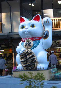 Lucky Cat is everywhere in Japan. This was one of the largest Maneki Neko, Neko Cat, Kitty Cats, Japanese Cat, Turning Japanese, Japanese Culture, Japon Tokyo, Tokyo Ville, Zen Gardens