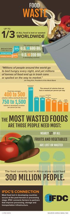 Food Waste - As millions face hunger worldwide, a staggering one-third of all food is lost or wasted. IFDC connects farmers to partners to alleviate food loss that occurs at the post-harvest or processing stage. Recycling Facts, Waste Solutions, Culinary Classes, World Hunger, Food Insecurity, Food System, Environmental Health, Food Safety, Global Warming