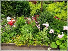Vorfreude auf die Gartensaison