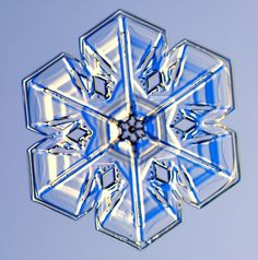 Photographs of real snowflakes reveal an even more amazing variety than you might have expected. Snowflake Photos, Real Snowflakes, Diamonds In The Sky, Ice Crystals, Mother Earth News, Winter Nail Designs, Snow And Ice, Snow Scenes, Winter Beauty