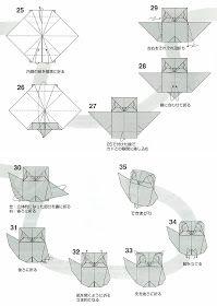 Los diagramas que os muestro hoy corresponden a una pequeña ave rapaz, el mochuelo, y además no resultan muy complicados; así que ya sabéis,...