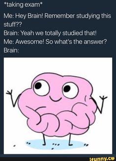 exam, school, brain, relatable, funny