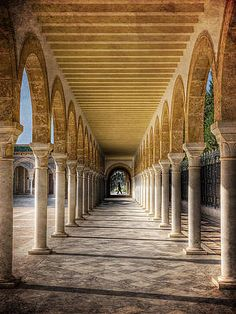 Tunisian Arches / Monastir Print by Barry O Carroll Never Sleep, Islamic Art, Art And Architecture, Fine Art America, Fashion Photography, Stairs, Arches, World, Corridor