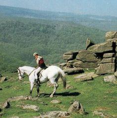 Gorgeous English Countryside - horseback!