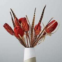 Metaflora x West Elm_Dried red banksea protea feathers Faux Flowers, Dried Flowers, Feather Bouquet, Orchid Bouquet, Ginger Flower, Boxwood Topiary, Low Maintenance Garden, Faux Plants, Green Plants