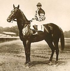 "Man O' War. The ""mostest hoss"" and the one by which all others are measured. Big Red is ranked No. 1 in greatest thoroughbred racehorses of all time. Winner of 20 of 21 races and known as a ""sire of sires"", two of his sons, Clyde Van Dusen and War Admiral, won the Triple Crown."