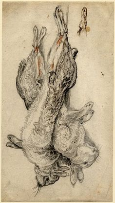 Drawing of a brace of dead hares by Flemish artist Jan Fyt, ca. 1626-1661.