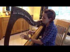 Harp company from ireland--Left hand