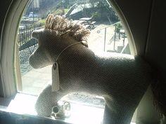 Ardalanish Horse enjoying the sunny weather Sunny Weather, Sunnies, Horses, Shop, Sunglasses, Horse, Shades