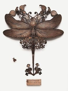 Wall jewelry- Anax imperator - Michaël Cailloux