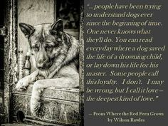 Poignant and profound words. ...