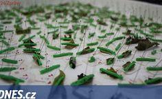 Vědci lepili na listy umělé housenky a zkoumali, kdo do nich kouše