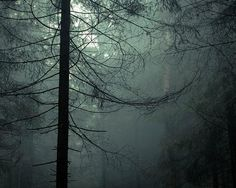 8 creepiest places in U.S. national #parks. #american #scary