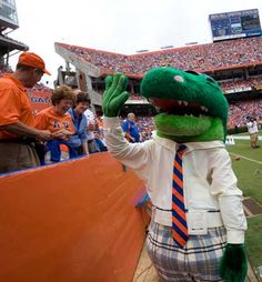 "2011: Social Creature    Albert joined Twitter (@GatorZoneAlbert). Sample tweet: ""Good Morning Twitterverse! It's Great to be a Florida Gator!"" What's next for Albert?"