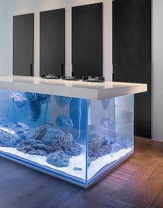 Aquarium In The Kitchen