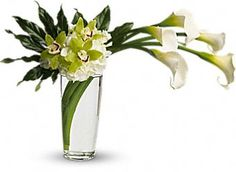 Moondance - Five large calla lilies are arranged with white hydrangea, bright green cymbidium orchids, and deep green aralia leaves in a tall pint vase.