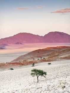 Namibia is home to some of the most inhospitable yet beautiful scenery in the world. Places To Travel, Places To See, Places Around The World, Around The Worlds, Beautiful World, Beautiful Places, Beautiful Scenery, Amazing Places, Photos Voyages