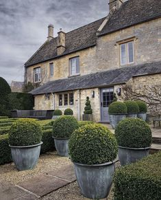 English Country Life with @irenemylife :: This Is Glamorous Zinc Planters, English Country Gardens, English House, Back Patio, Back Gardens, Country Life, Beautiful Gardens, Farmhouse Style, Architecture
