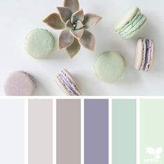 today's inspiration image for { color spring } is by @littlegirls_greatbigdreams ... thank you Renee for sharing your fresh  inspiring photo in #SeedsColor ! by designseeds