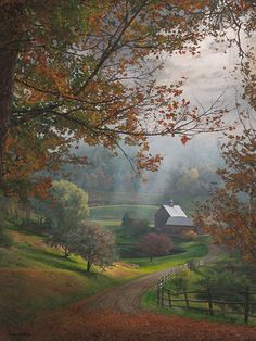 American Art and Paintings for Sale by Phillip Philbeck Studio Woodstock Vermont, Autumn Painting, Nature Paintings, Watercolour Paintings, Art Paintings, Art Impressions, Artist Life, Cool Artwork, Amazing Artwork