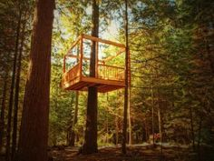 You'll walk the plank, zipline and even cable car your way into these treehouse retreats.