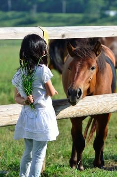 little kids and horses always make adorable pictures!