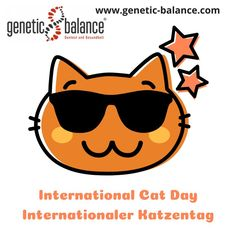 Heute ist der #InternationaleKatzentag - #HappyCatDay! #InternationalCatDay #CatDay #Cat #Cats #InternationalerKatzentag #Katzentag #Katze #Katzen #lowcarb #lowfat #startedasabenteuer #macheseinfach #geneticbalance #dnatest #dna #abnehmen #gesund #healthy #health #gesundheit #dnastyle #ernährung #ernährungsplan #sportprogramm #diet #essen #eating #kochen #cooking Fun Quotes, Best Quotes, Dna, Movie Posters, Loosing Weight, Cats, Health, Food, Film Poster