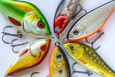Learn all you need to know to start making your own lures - crankbaits, spinners, soft plastics and jigs. Catch more fish with our complete guide to lure making