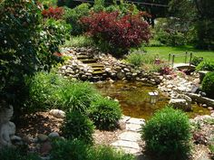 Our Favorite DIY Gardens from Rate My Space: It took these DIYers almost two years to finish their fabulous water feature and garden. It was well worth the wait -- the results are terrific. Posted by Rate My Space contributor 11138727. From DIYnetwork.com