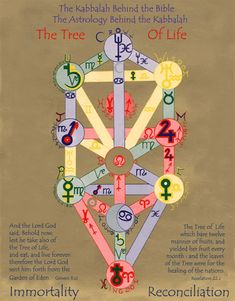tree of life 12 houses in astrology - Google Search