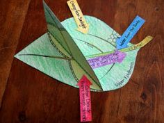 Photosynthesis foldable - lots of amazing foldables for science
