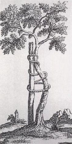 Andry tree - Nicolas Andry - Wikipedia, the free encyclopedia
