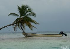 Afloat | H Hugh Miller #photography #palmtree #boat #sea #fineart #artwork #artist #art