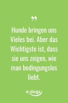 Hundeliebe - von Hunden lernen Funny dog sayings, inspirational quotes, DIY and more about the dog can be found at edogs. - saying of the day - dog man Zitate Dog Quotes Funny, Jokes Quotes, Dog Memes, True Quotes, Funny Dogs, Dog Sayings, Saying Of The Day, German Quotes, Best Quotes Ever