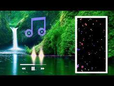 Green Screen Background Images, Green Background Video, Blur Photo Background, Natural Background, Background Images Wallpapers, Photo Backgrounds, Happy Birthday Dj, Beautiful Lyrics