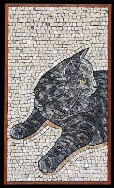 cat beautiful lines andamento