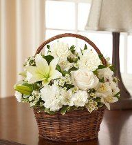 1800Flowers - Peace, Prayers, & Blessings- All White - Small //  Description Make a heartfelt gesture of your sympathy with our classic all-white basket arrangement of roses, lilies, alstroemeria, carnations and monte casino. Hand-gathered into a lovely willow handled basket, it's a simple yet touching way to offer peace and comfort during their time of sorrow. Hand-gathered basket arrangement// read more >>> http://Hammons283.iigogogo.tk/detail3.php?a=B007ILH85E