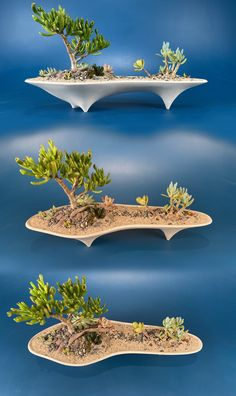 The Island Concrete Modern Planter is long centerpiece planter that is ideal for modern decor and mid-century design lovers. Handmade and unique, designed to enhance the texture and form of your succulent plants. Create your own mini island getaway. Concrete Crafts, Concrete Planters, Succulent Bonsai, Planting Succulents, Long Planter, Papercrete, Mould Design, Modern Planters, Paperclay