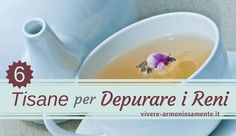 tisane-per-depurare-i-reni Thai Chi, Renoir, Internet, Tableware, Health, Chromotherapy, Home, Dinnerware, Health Care