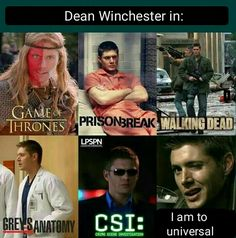 Dean Winchester is universal.<<< Oh my gosh just imagine Dean Winchester in Game of thrones Spn Memes, Supernatural Quotes, Supernatural Fandom, Sherlock Quotes, Supernatural Tattoo, Supernatural Pictures, Supernatural Wallpaper, Winchester Supernatural, Winchester Boys