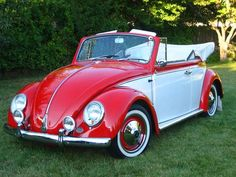 1965 VW Volkswagen Bug Beetle Convertible rood/wit