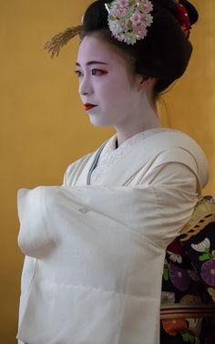 2017 舞妓 祇園甲部 佳つ扇さん 2017 maiko, Gion Kobu, Katsusen