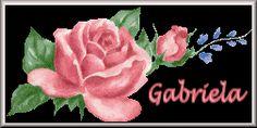 gabriela/gabriela-353405