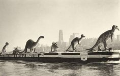 dinosaurs on barge across New York Harbor on their way to the Sinclair Oil Company Exhibit at the 1964 World's Fair in Flushing Meadows, New York / via qvcproject.blogspot.com