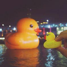.@michitorralba | The giant rubber duck by Dutch artist Florentijn Hofman at Victoria Harbour. ... | Webstagram - the best Instagram viewer