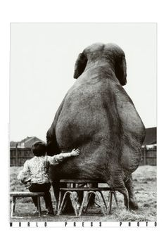 a boy and his elephant :)