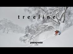 Treeline (Full Film) | The Secret Life of Trees - YouTube. Patagonia Films presents Treeline: A Story Written in Rings, available in full for the first time. Follow a group of skiers, snowboarders, scientists and healers to the birch forests of Japan, the red cedars of British Columbia and the bristlecones of Nevada, as they explore an ancient story written in rings. Suggested by Wild Tree Adventures
