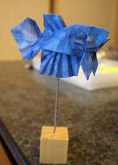 https://flic.kr/p/LvT67C   【Origami】 Betta (Designed by Kaede Nakamura)   ベタ (中村楓作:第22回折紙探偵団コンベンション折り図集より) 折り手:小林弘明 Designed by Kaede Nakamura, (22th Origami Tanteidan Convention Book), folded by Hiroaki Kobayashi. Made from one square paper. 折紙作品 不切正方形一枚折り。
